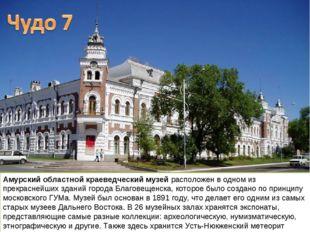 Амурский областной краеведческий музей расположен в одном из прекраснейших зд