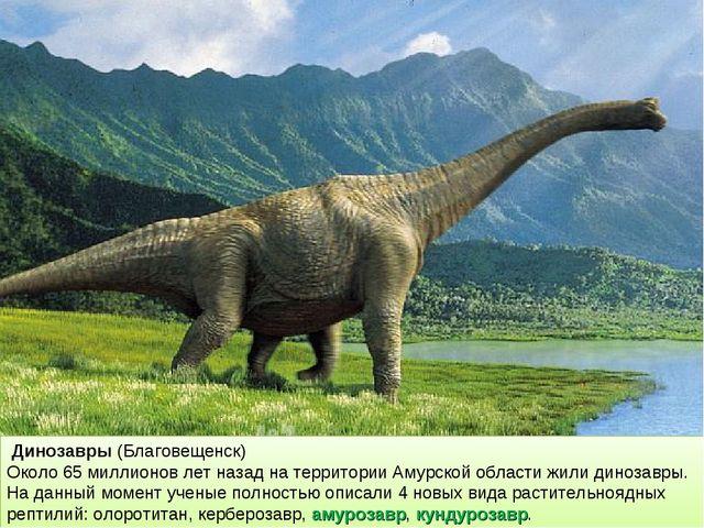 Динозавры (Благовещенск) Около 65 миллионов лет назад на территории Амурской...