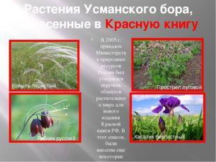 Растения Усманского бора, занесенные в Красную книгу В 2005 г. приказом Минис