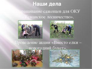 Наши дела Выращивание саженцев для ОКУ «Усманское лесничество». Проведение ак