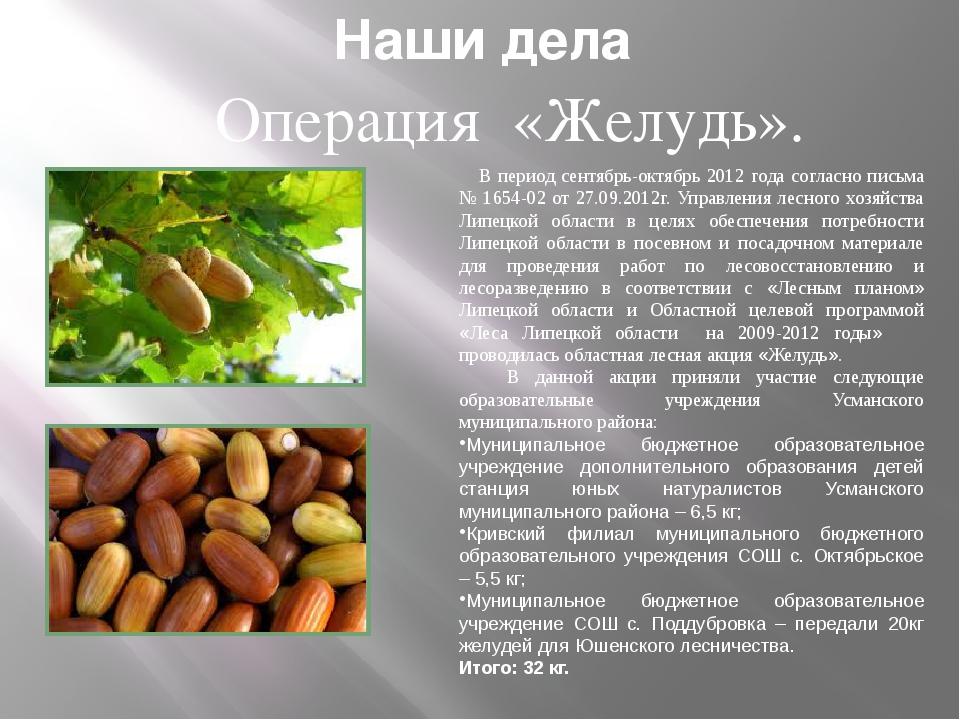 Наши дела Операция «Желудь». В период сентябрь-октябрь 2012 года согласно пис...