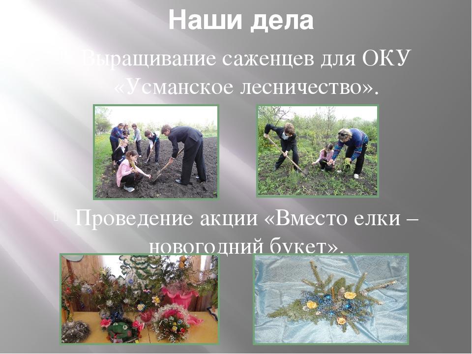 Наши дела Выращивание саженцев для ОКУ «Усманское лесничество». Проведение ак...