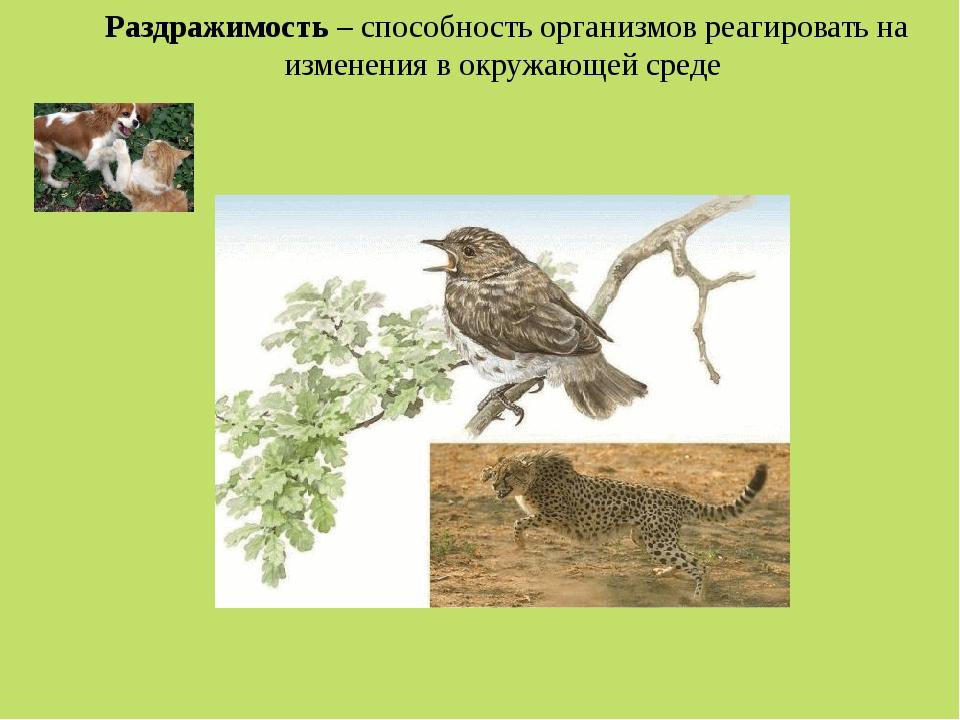 Раздражимость – способность организмов реагировать на изменения в окружающей...