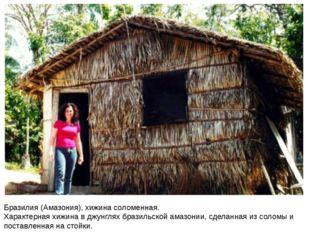 Бразилия (Амазония), хижина соломенная. Характерная хижина в джунглях бразиль