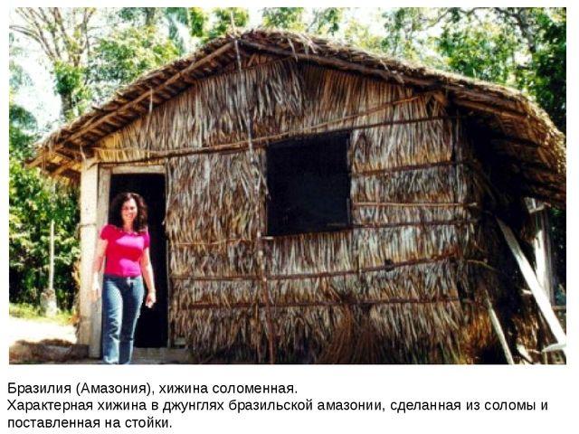 Бразилия (Амазония), хижина соломенная. Характерная хижина в джунглях бразиль...