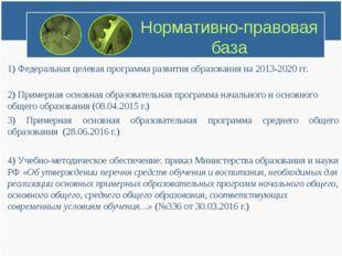 Нормативно-правовая база 1) Федеральная целевая программа развития образовани