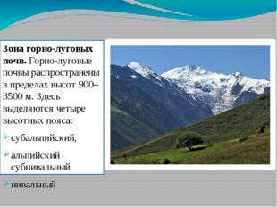 Зона горно-луговых почв. Горно-луговые почвы распространены в пределах высот