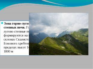 Зона горно-лугово степных почв. Горно-лугово степные почвы формируются на южн
