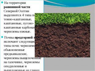 На территории равнинной части Северной Осетии выделяются 4 типа почв - темно-