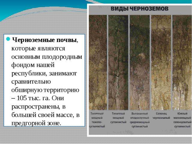 Черноземные почвы, которые являются основным плодородным фондом нашей республ...