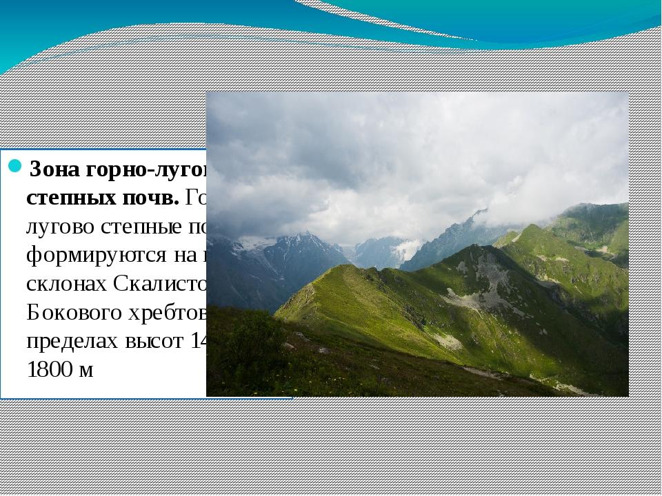 Зона горно-лугово степных почв. Горно-лугово степные почвы формируются на южн...