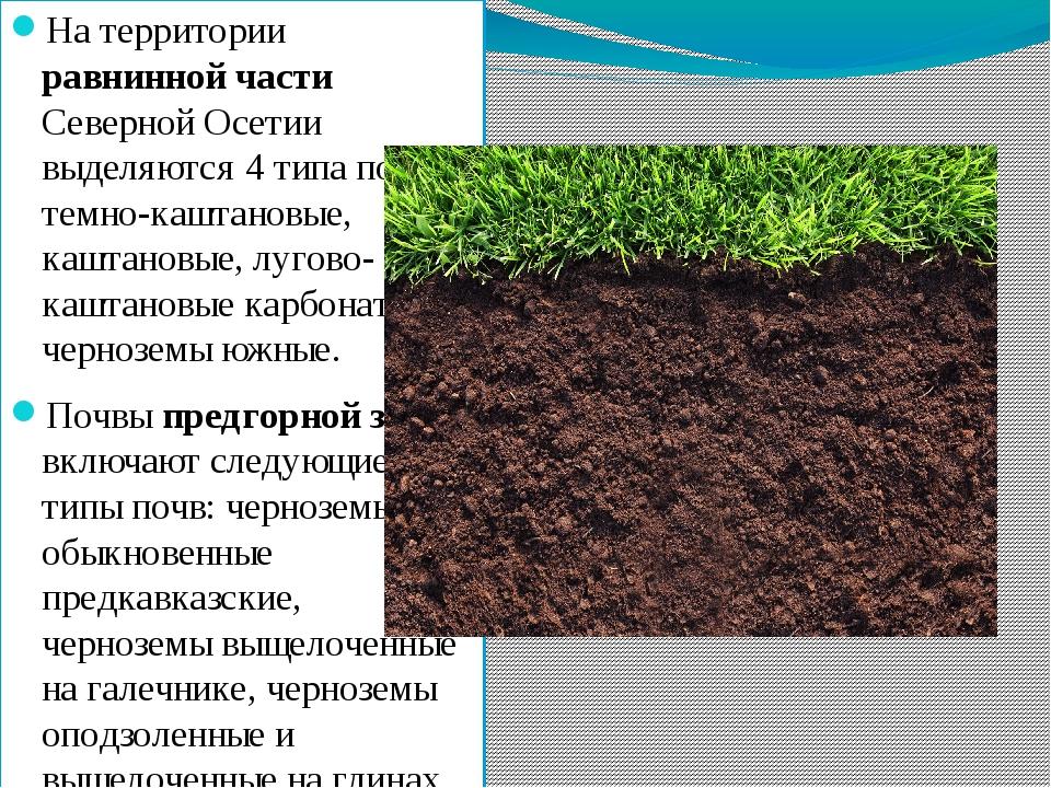 На территории равнинной части Северной Осетии выделяются 4 типа почв - темно-...