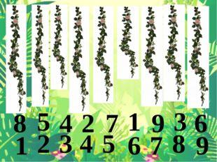 8 5 4 2 7 1 9 3 6 1 2 3 4 5 6 7 8 9