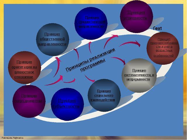 Text Text Text Text Принципы реализации программы Принцип общественной напра...