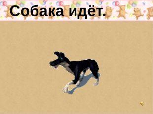 Собака идёт.