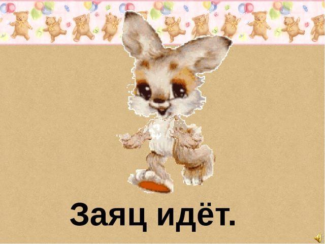 Заяц идёт.