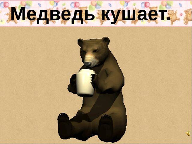Медведь кушает.