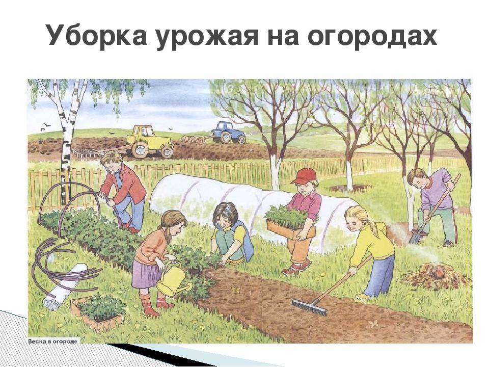 игры для детей поле чуднс