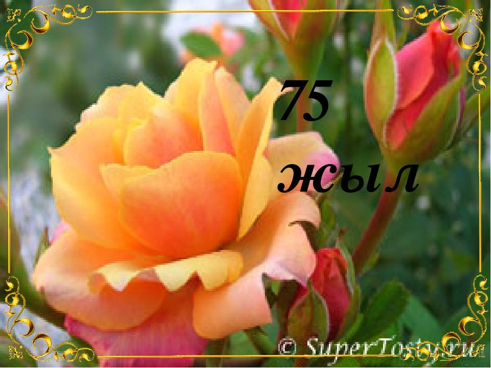 75 жыл