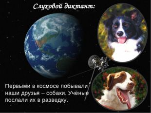 Слуховой диктант: Первыми в космосе побывали наши друзья – собаки. Учёные пос