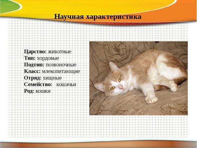 Научная характеристика Царство: животные Тип: хордовые Подтип: позвоночные К...