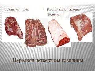 Передняя четвертина говядины Лопатка, Шея, Толстый край, покромка-Грудинка,