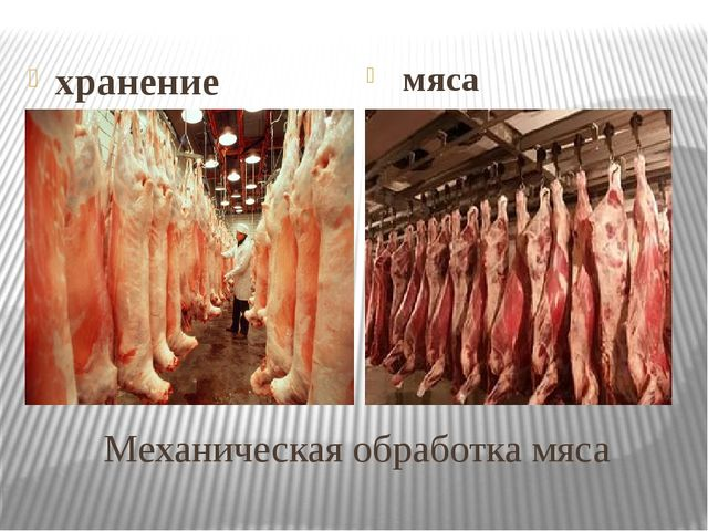 Механическая обработка мяса хранение мяса