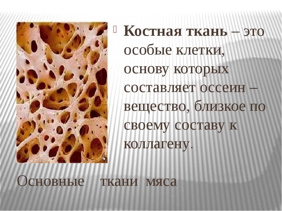 Основные ткани мяса Костная ткань – это особые клетки, основу которых составл...