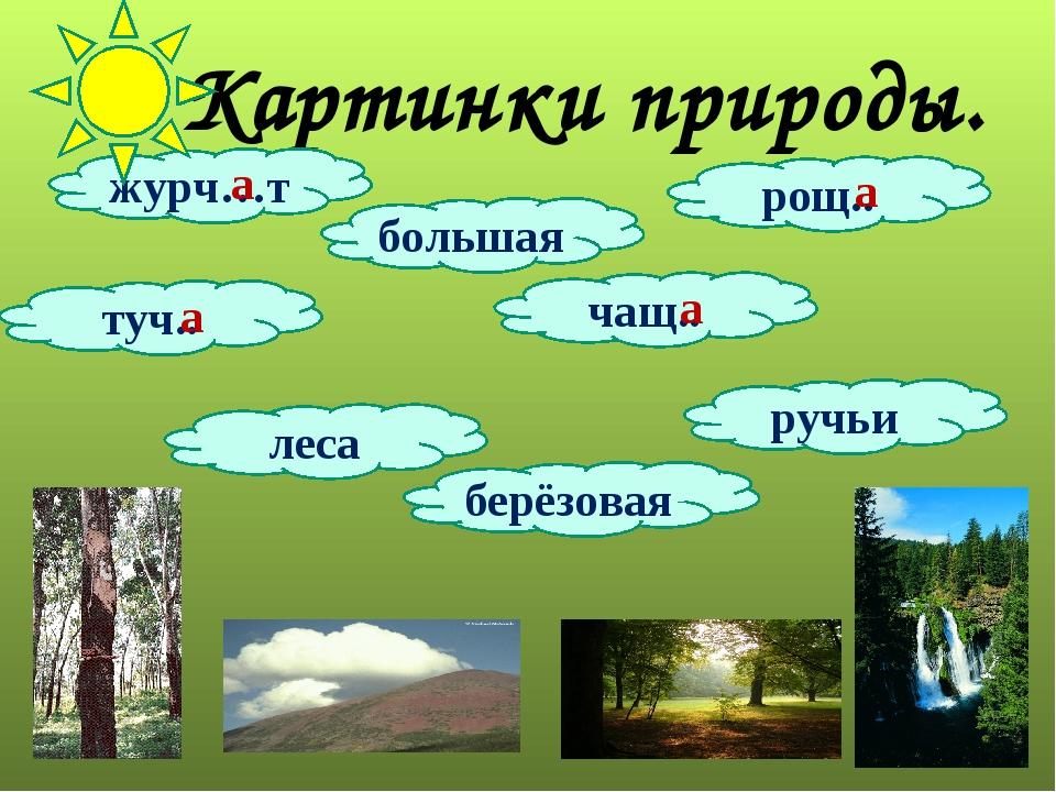 Картинки природы. журч…т рощ.. ручьи берёзовая чащ.. туч.. большая леса а а а а