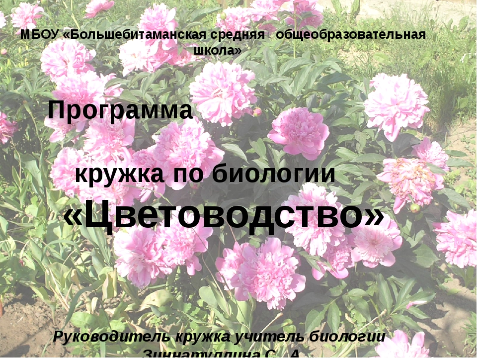 МБОУ «Большебитаманская средняя общеобразовательная школа» Программа кружка...