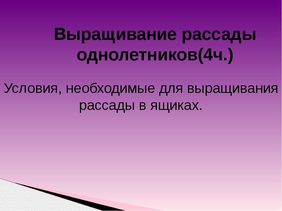 Выращивание рассады однолетников(4ч.) Условия, необходимые для выращивания р...
