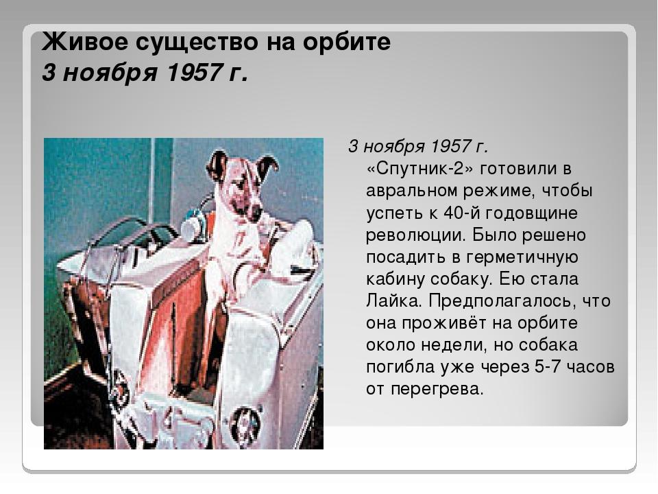 Живое существо на орбите 3 ноября 1957 г. 3 ноября 1957 г. «Спутник-2» готови...