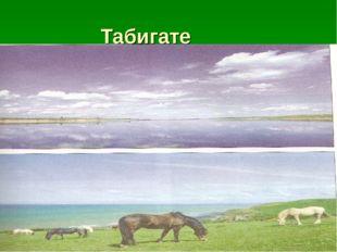 Табигате