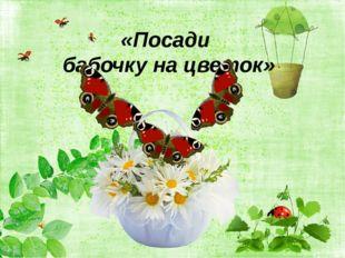 «Посади бабочку на цветок»