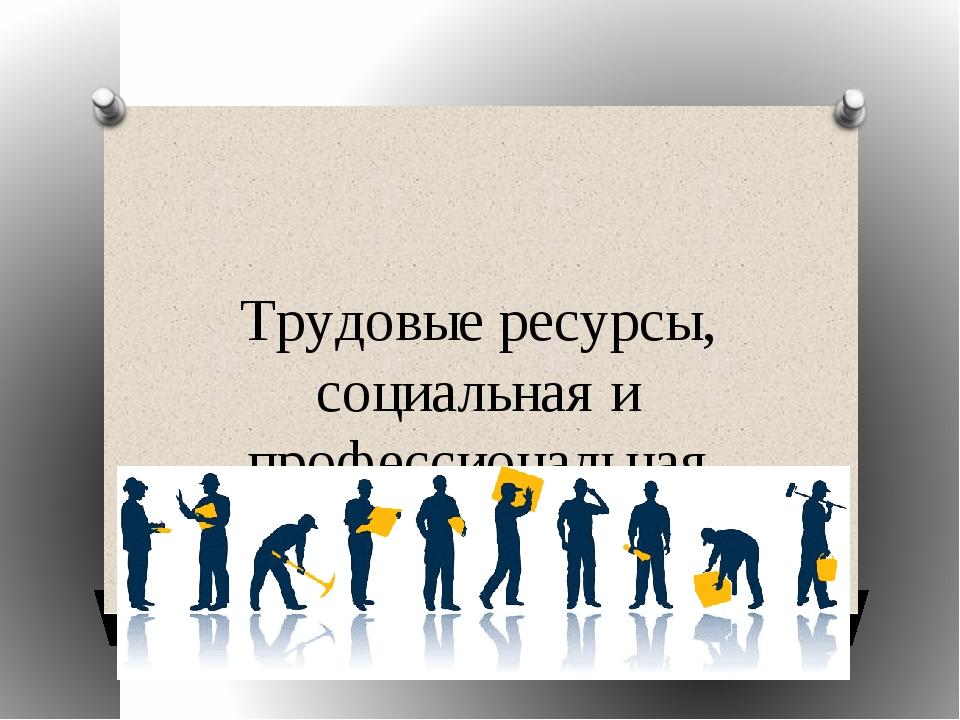 Трудовые ресурсы, социальная и профессиональная структура