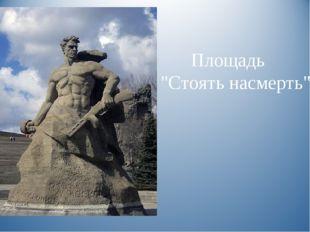 """Площадь """"Стоять насмерть""""."""