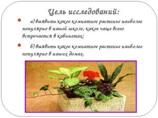 Цель исследований: а) выявить какое комнатное растение наиболее популярно в