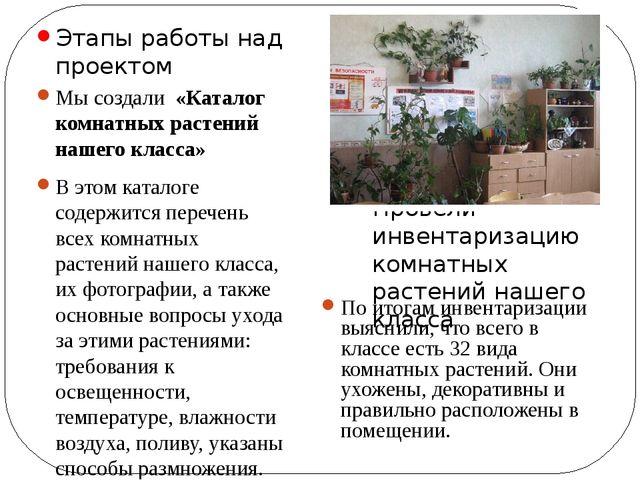 Этапы работы над проектом Провели инвентаризацию комнатных растений нашего кл...