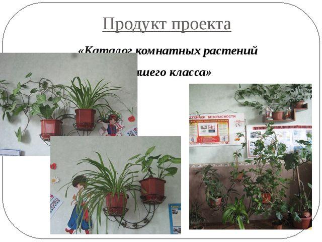 Продукт проекта «Каталог комнатных растений нашего класса»