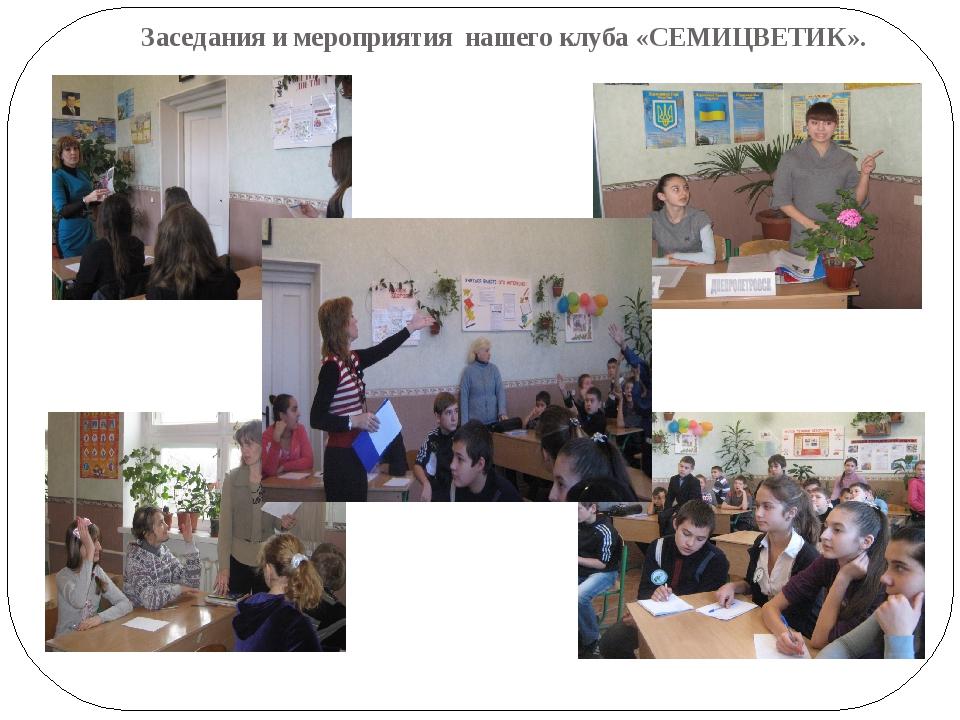 Заседания и мероприятия нашего клуба «СЕМИЦВЕТИК».