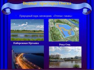 Водные просторы Омска Природный парк-заповедник «Птичья гавань» Набережная Ир