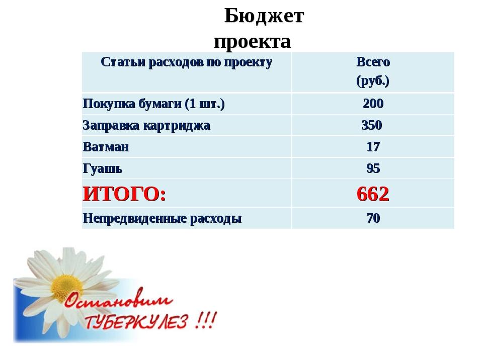 Бюджет проекта Статьи расходов по проектуВсего (руб.) Покупка бумаги (1 шт.)...