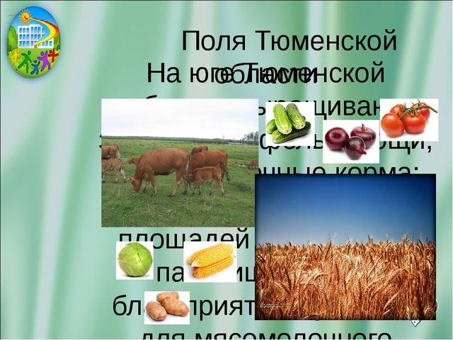 Поля Тюменской области На юге Тюменской области выращивают зерно, картофель,...