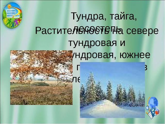 Тундра, тайга, лесостепь Растительность на севере тундровая и лесотундровая,...
