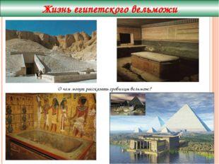 Жизнь египетского вельможи О чем могут рассказать гробницы вельмож?
