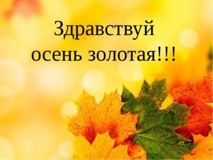 Здравствуй осень золотая!!!