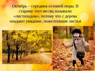 Октябрь – середина осенней поры. В старину этот месяц называли «листопадом»,