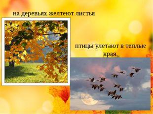 на деревьях желтеют листья птицы улетают в теплые края.