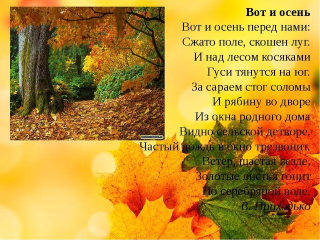 Вот и осень Вот и осень перед нами: Сжато поле, скошен луг. И над лесом кося...