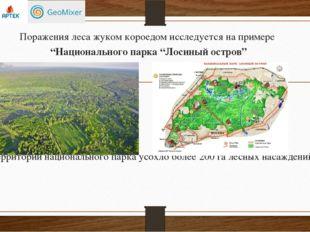 """Поражения леса жуком короедом исследуется на примере """"Национального парка """"Ло"""